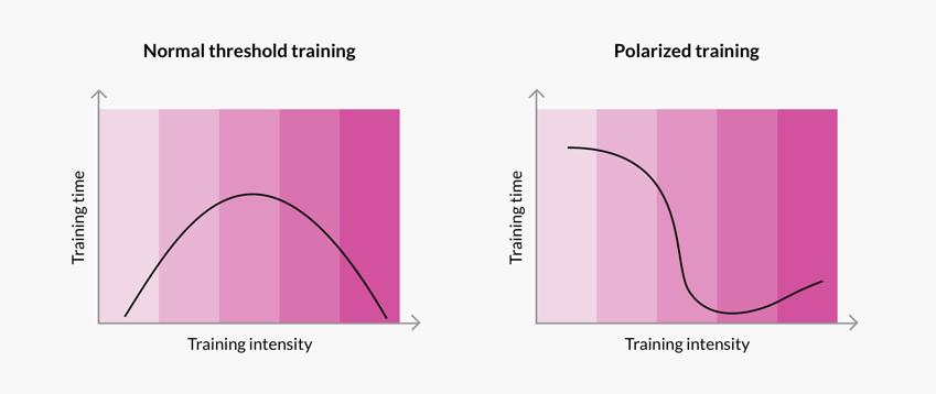Threshold vs. Polarized Training